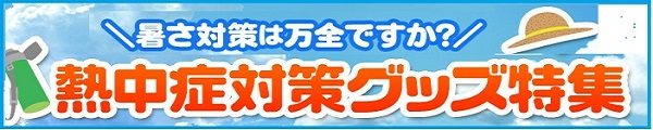 Sum02_600_120.jpg width=